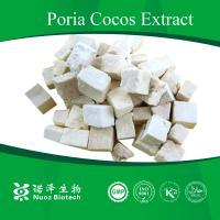China Natural Organic Poris cocos powder extract wholesale