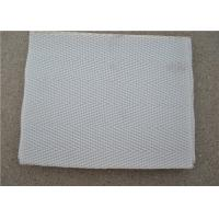 High Temperature Resistant Polyester Mesh Belt With White Used For Sewage