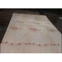 China Commercial Knotty Pine Plywood 2 Time Hot Press Premium Quality FSC Approved wholesale