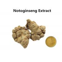 China 10% Sanchinosides Notoginseng Extract Powder , Natural Herbal Extracts Anti - Atherosclerosis wholesale