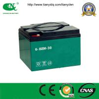 China Factory Price Sealed Lead Acid 48V65ah Battery for Electric Vehicle wholesale