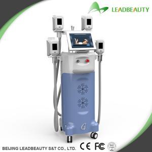 China Beauty body shaper slimming fat freezing cryolipolysis machine wholesale