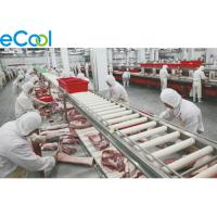 China Constant Keeping Multipurpose Cold Storage For Meat / Fish / Chicken / Beef wholesale