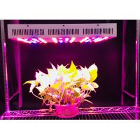 China 55W / 110W / 220W / 330W Hydroponic Led Grow Lights Full Spectrum For Greenhouse wholesale