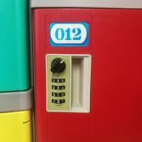 China Stylish Appearance ABS Plastic Lockers With Stainless Steel Coin Locks wholesale