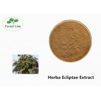 Quality Brown Yellow Plant Extract Powder Natural Herb Herba Ecliptae Extract Food Grade for sale