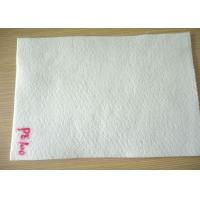 China 100 Micron Non Wowven PE Micron Filter Cloth / Filter Fabric For Industry Liquid Filter Bag wholesale