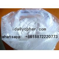 China CAS NO.315-37-7 Testosterone Enanthate Injectable Steroid Powder on sale