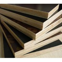 China film faced plywood price on sale