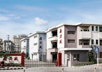 Shenzhen Dinglisheng Technology Co., Ltd.