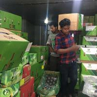 China Fruits Cold Room wholesale