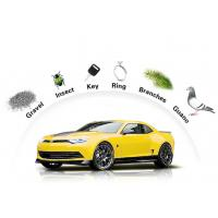 China Auto Paint Protection Film Anti Fouling Outdoor 7 - 10 Years Durability wholesale