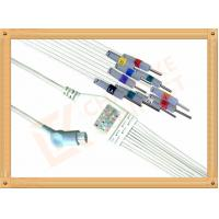 China Philips HP Ecg Patient Cable 10 Lead Wires Needle AHA Philips Ecg Cables wholesale
