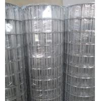 """China Hot-dipped Galvanized Welded Wire Mesh   3""""X2"""",2.7mm,1.2-1.8m wholesale"""