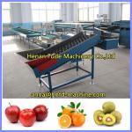 China kiwi fruit grading machine, orange sorting machine wholesale