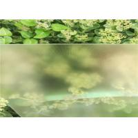 Buy cheap Solid Structure Low Iron Solar Glass 3.2MM / 4MM Thickness Light Transmittance 91.7% from wholesalers