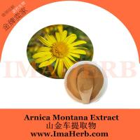 GMP Manufacture Halal Approved arnica montana extract from Felicia@imaherb.com