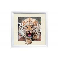 China 5D House decorative Picture 3D Lenticular Printing Service CMYK Offset Printing wholesale