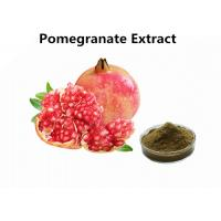 China Supplements Fruit Extract Powder Pure Natural 30% Punicalagin Pomegranate Extract wholesale