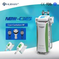 China Best Quality Cool Cryolipolysis Slimming Machine with 2 Cryo Handles Work Simultaneously wholesale