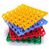 China High quality Plastic egg tray 30 holes Plastic egg trays for sale wholesale