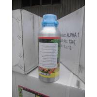 China Fungicide for fruit and sugar beet cereals,Carbendazim 80%WP CAS NO. 10605-21-7 on sale