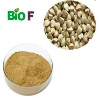 China Natural Energy Supplements Buckwheat Powder With Flavon Solvent Extraction wholesale