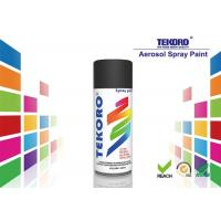 China Interior & Exterior Enamel Spray Paint Various Colors For Furniture / Bicycles wholesale