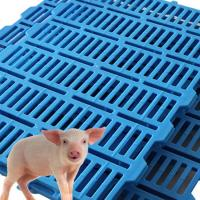 China 600mmx500mm Pig Goat farm Plastic Slat Floor high impact farm equipment wholesale
