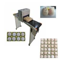 China Automatic Egg Code Printing Machine , Small Character Inkjet Coder For Eggs wholesale