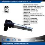 China VW / AUDI 036905100A 036905100C BERU 0040102030 SKODA 036905100B SEAT 036905100A Car Ignition Coil unit , ignition parts wholesale