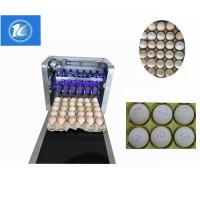 China Semi - Auto Egg Stamping Equipment Low Maintenance Cost One Year Warranty wholesale