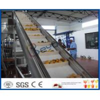 China 2TPH ~ 20TPH SUS304 Mango Processing Line With 2kg Cans Filling Machine on sale