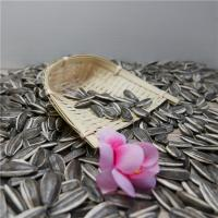 China Natural Organic Agro-products Processing Grade AA 290-300grains/100g Black Sunflower Seeds wholesale