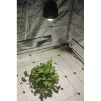 LED Grow Lighs 54W 3500K daylight white, For Closet grow, cabinet grow, grow tents