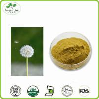 China High Quality pure natural Dandelion root powder wholesale