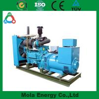 China 10KW biogas generator for recycling wholesale