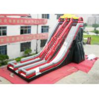 China Ice Age Inflatable Slide Rental Double Water Slide For Ice Age Film Fans on sale