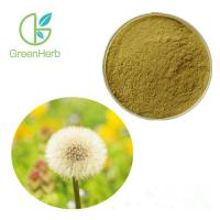 China Taraxacum Officinale Wigg Herbal Plant Extract Dandelion Root Extract 4% Favonoids wholesale