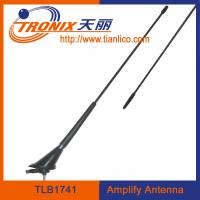 China roof mount car electronic antenna/ black color car amplifier antenna/ car am fm antenna TLB1741 wholesale