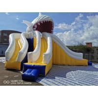 China Giant Shark Commercial Inflatable Water Slides / Triple Lanes Adults Water Slide on sale