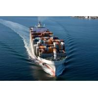 China Cheapest rate of sea freight forwarder wholesale
