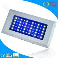 China 55*3W LED Marine Fish Aquarium Lights wholesale