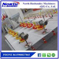 China Automatic poultry farm equipment for chicken raising wholesale