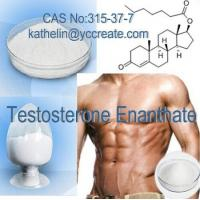 China Effective Steroid Powder Testosterone Enanthate for Body Building CAS: 315-37-7 wholesale