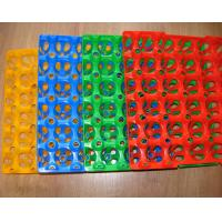 China Disposable plastic egg trays for sale China Plastic Egg Trays wholesale