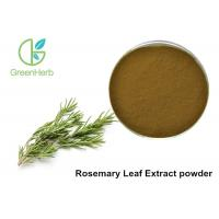 China 5% Rosmarinic Acid Rosemary Leaf Extract Powder Brown Yellow Color wholesale