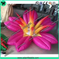 China Pink Inflatable Flower With LED Light,Event Party Inflatable Flower Customized wholesale