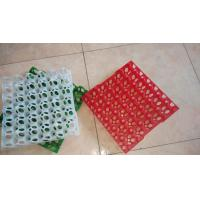 China Egg Cartons and Trays Cheap Plastic Egg Trays wholesale