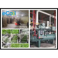 China Low Temperature Multipurpose Cold Storage For Vegetable Processing PU Panel wholesale